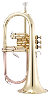 Flugel Horns