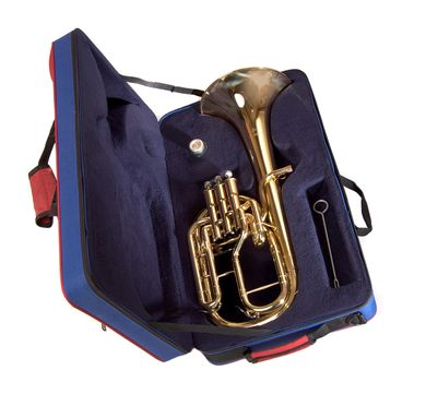 JP072 Tenor Horn case open