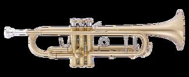 JP251SW Trumpet Bb satin CUTOUT