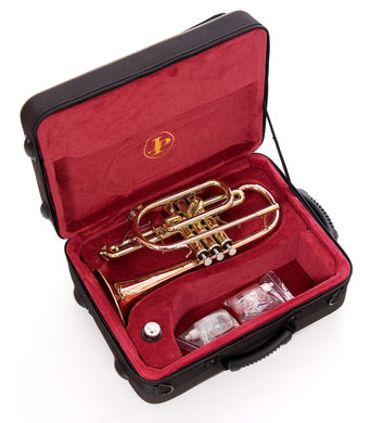 JP271SW Cornet in case