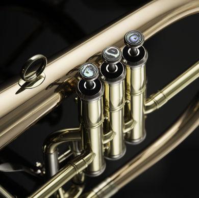 JP275SW Flugel Horn Macro 01 1
