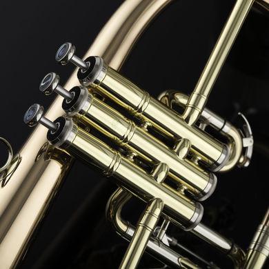 JP275SW Flugel Horn Macro 01 2
