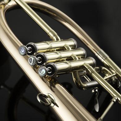 JP275SW Flugel Horn Macro 01 3