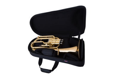 JP Pro Tenor Flugel Horn Case Instrument in Case
