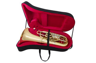 JP379 Sterling FF Tuba INSTRUMENT IN CASE SHOT