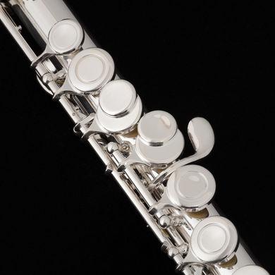 JP010CH Flute MacroShot