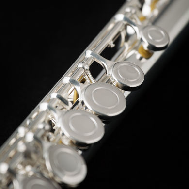 JP011 Flute MacroShot