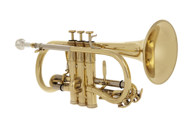 JP176 Cornet Lacquer Angled CUTOUT  reduced