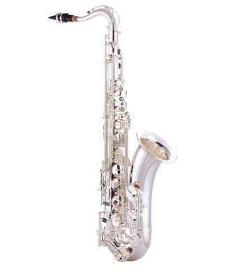 JP042S Sax Silver CUTOUT reduced