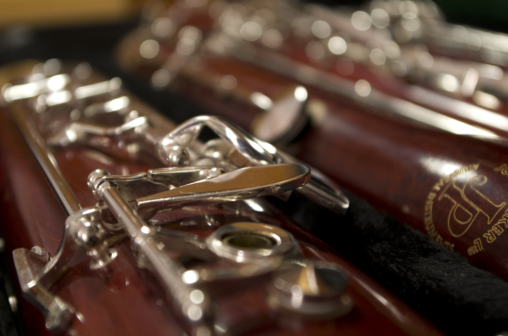 Bassoon courses and projects - LAURENCE PERKINS