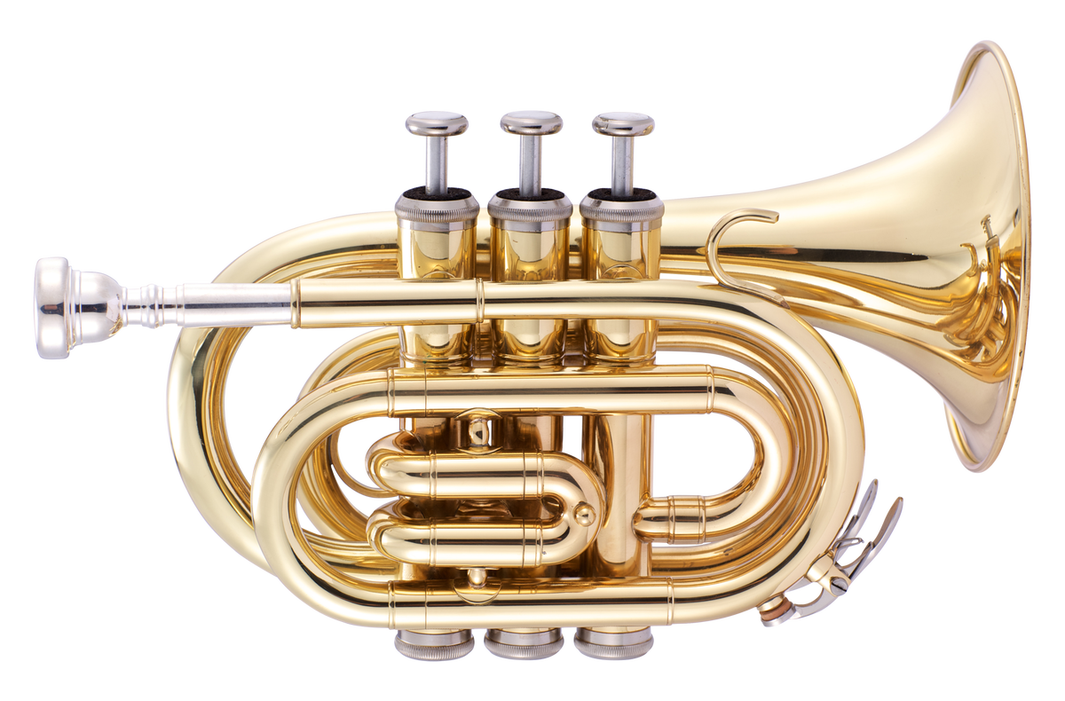 JP159 Bb pocket trumpet Gold Lacquer CUTOUT